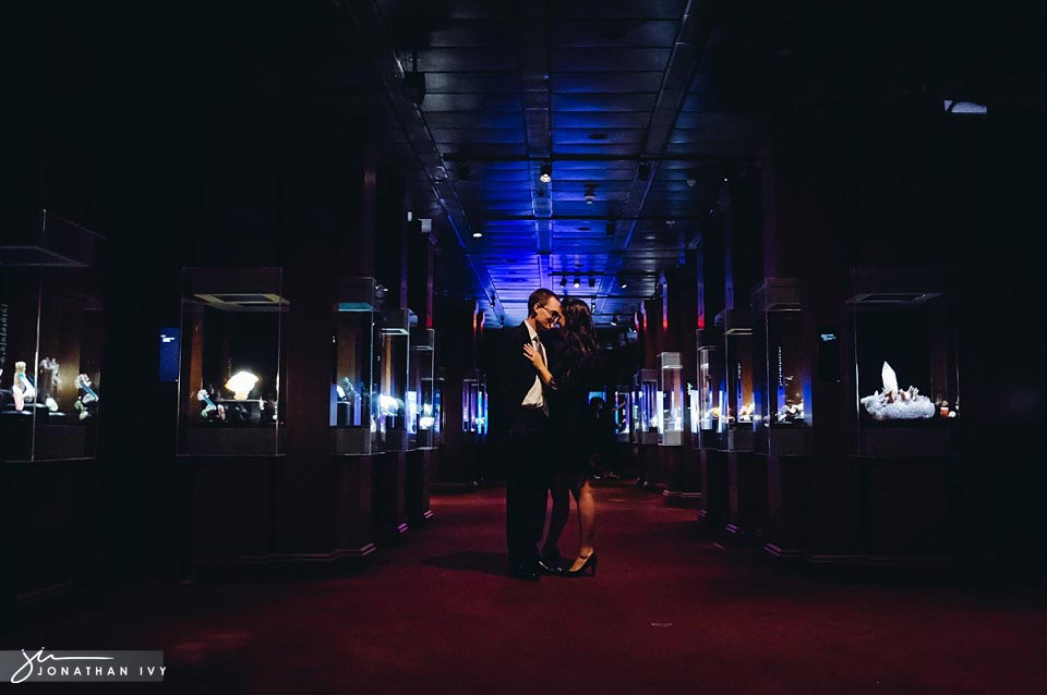 houston museum of natural science engagement photos_0001.jpg