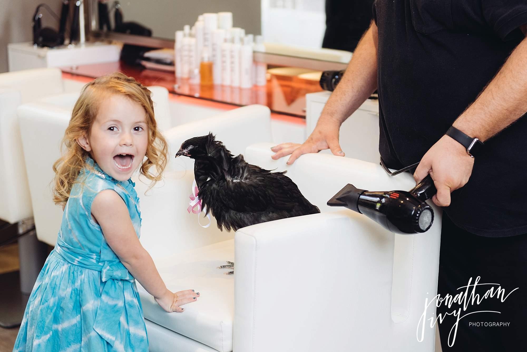 Chicken-goes-to-salon