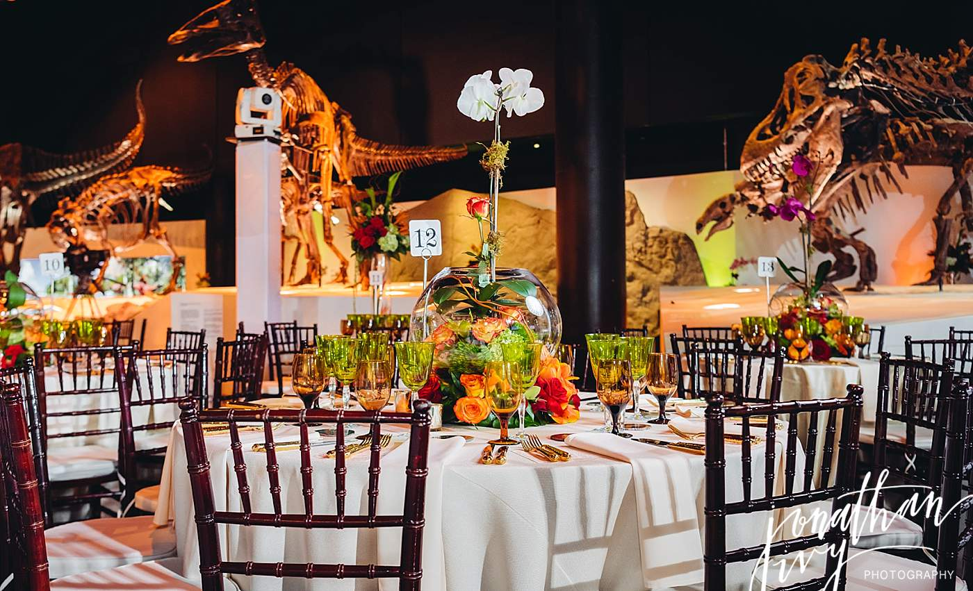 Reception at Houston Museum of Natural Science - Chang ...