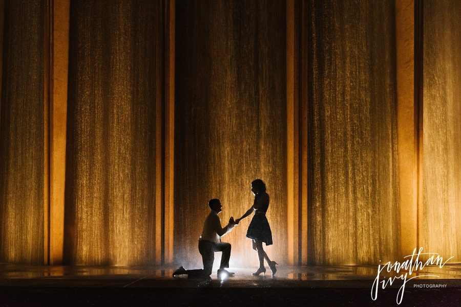 Engagement Proposal at Houston Waterwall