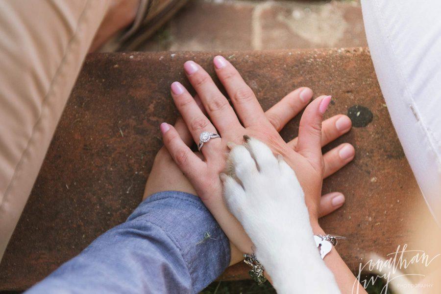 Dog Paw Engagement Photo Idea