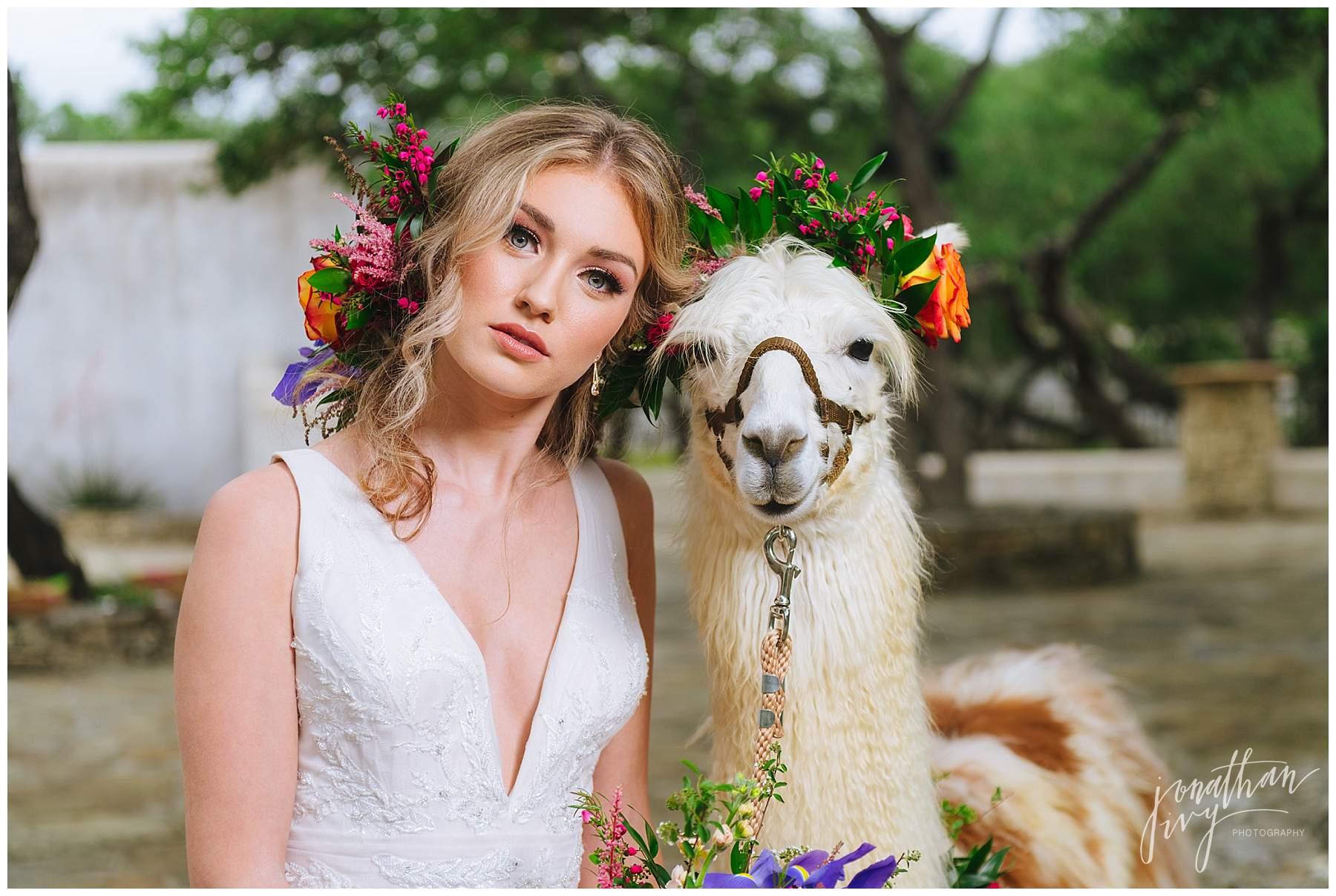Lost Mission Bridal with Llama
